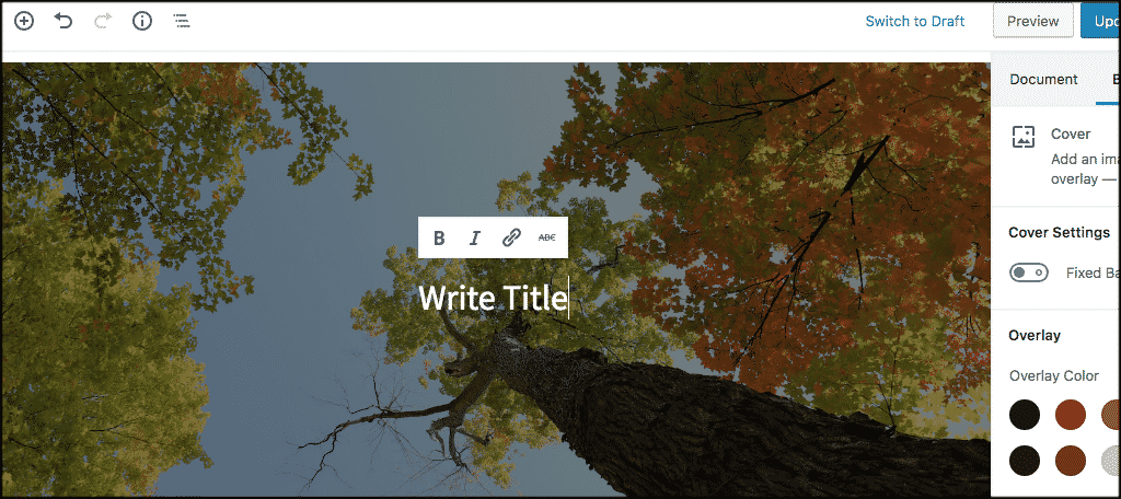 Text overlay option on cover image bloack
