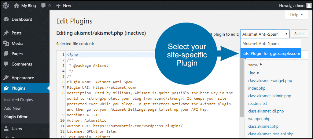 tutorial create site-specific custom WordPress plugin step 10
