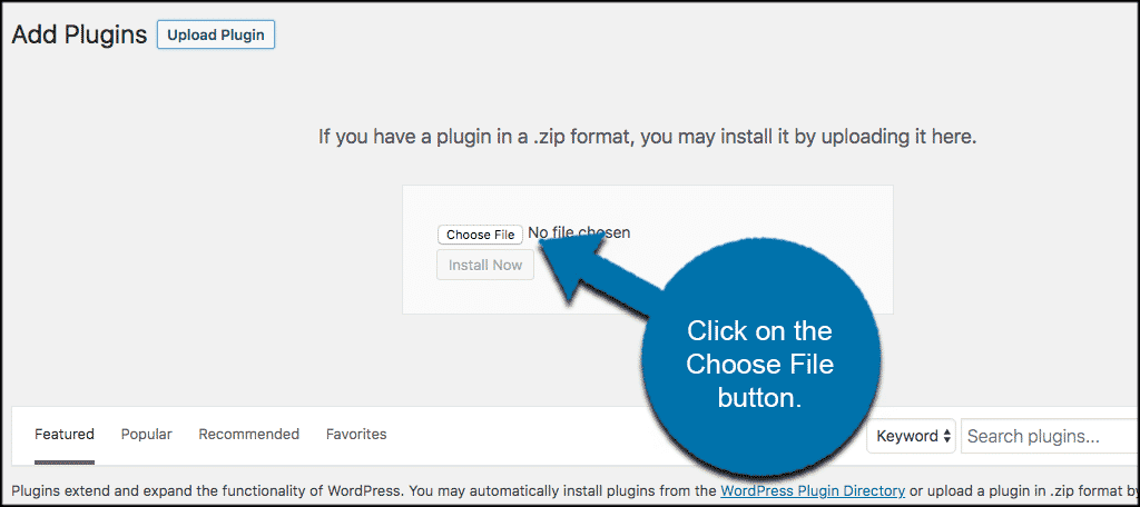 Click on the choose file button