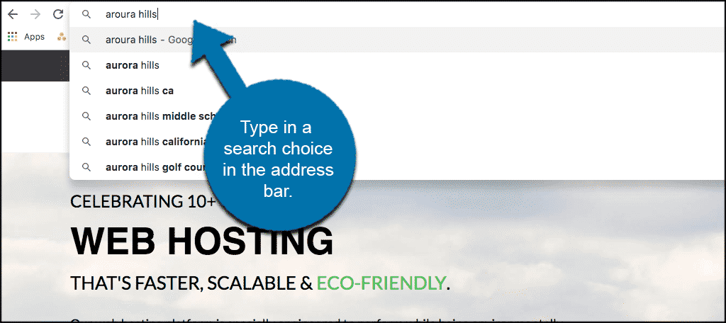 Type a search selection in the address bar of google chrome