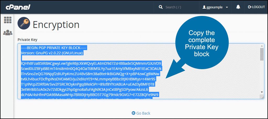 copy the private key block