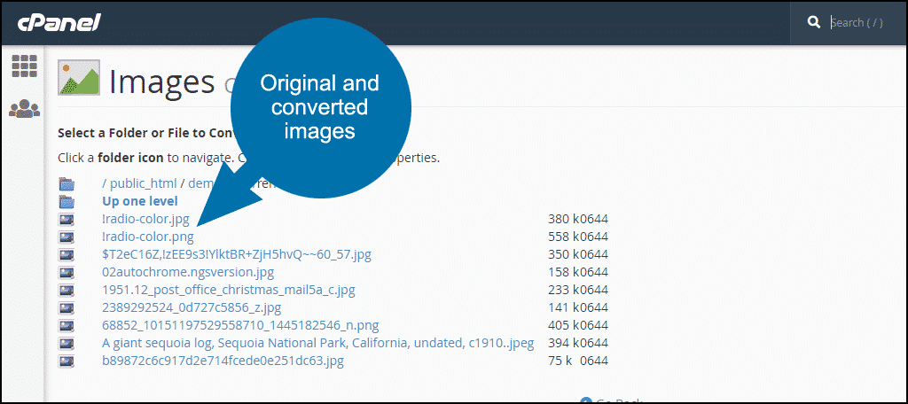 cPanel image format conversion step 9