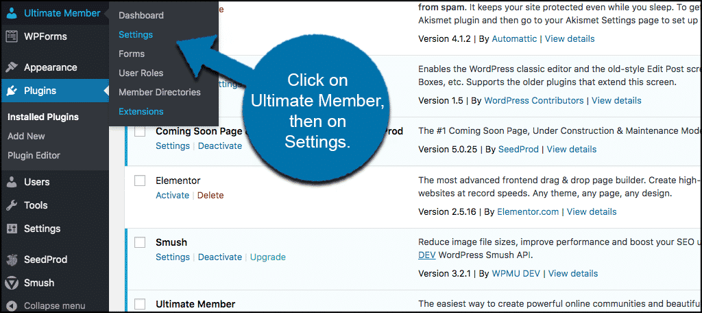 Click on ultimate member tab