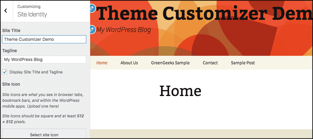 Theme customizer site identity panel