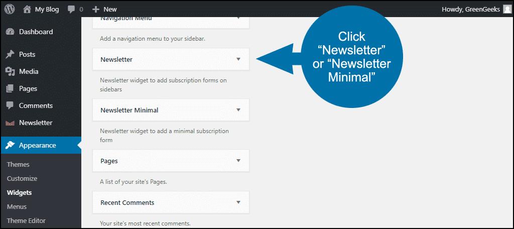 """click """"Newsletter"""" or """"Newsletter Minimal"""""""