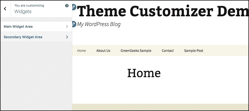Wordpress theme customizer widget panel
