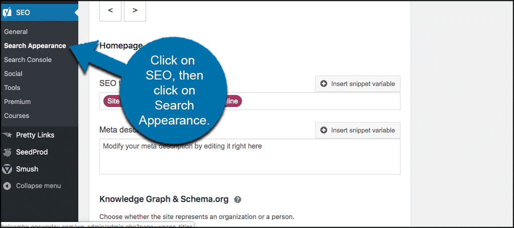 Click seo then search appearance
