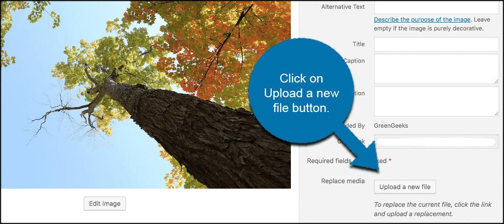 Click upload a new file button
