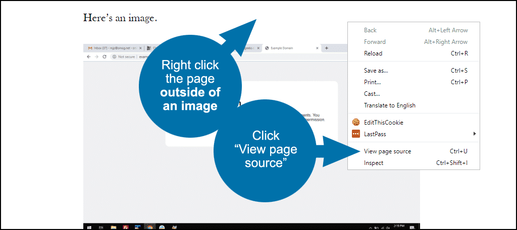 """click the """"view page source"""" link"""