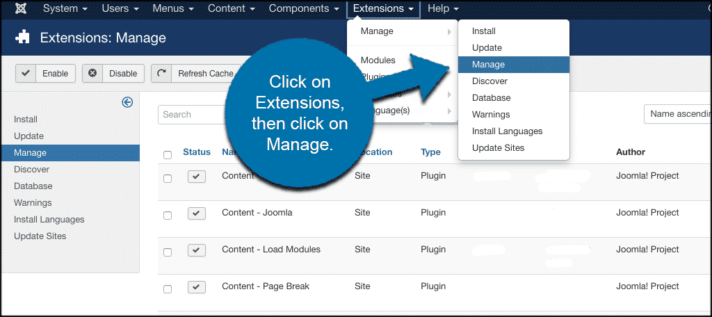 Click extensions then manage