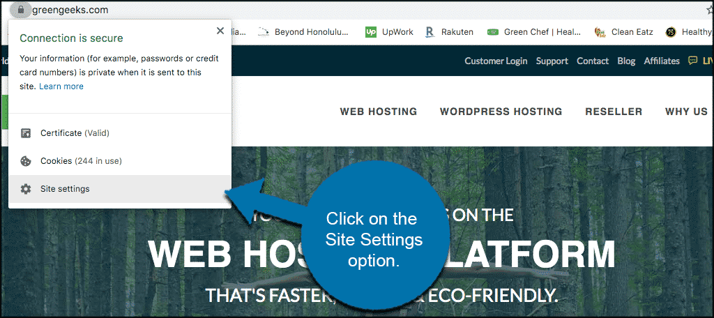 Click site settings in the dropdown