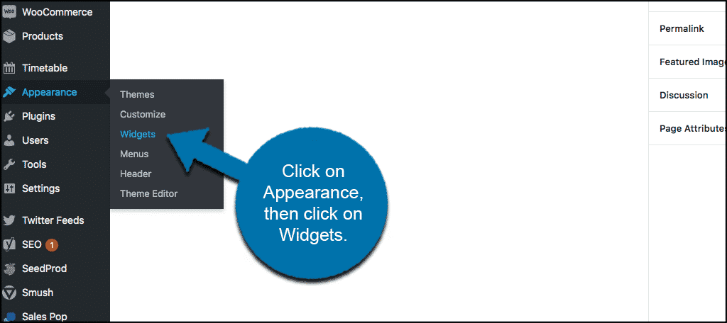 Click on appearance then widgets