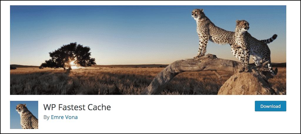 WP-fastest cache