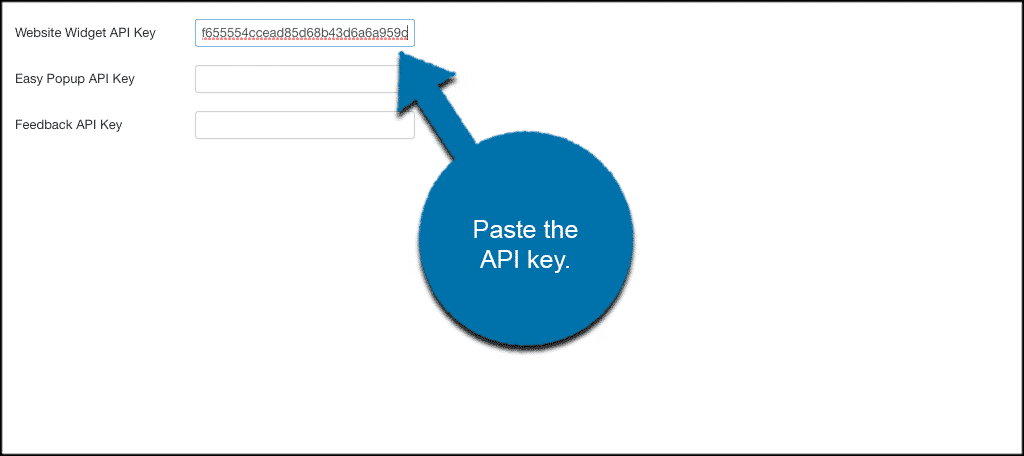 Paste the api key