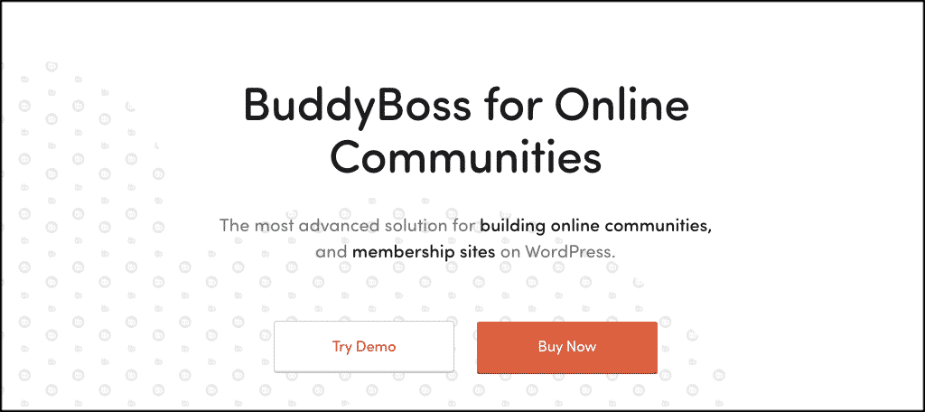 BuddyBoss community theme