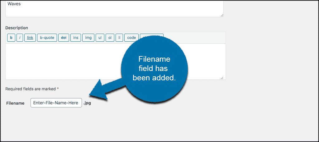 Filename field added to rename an image