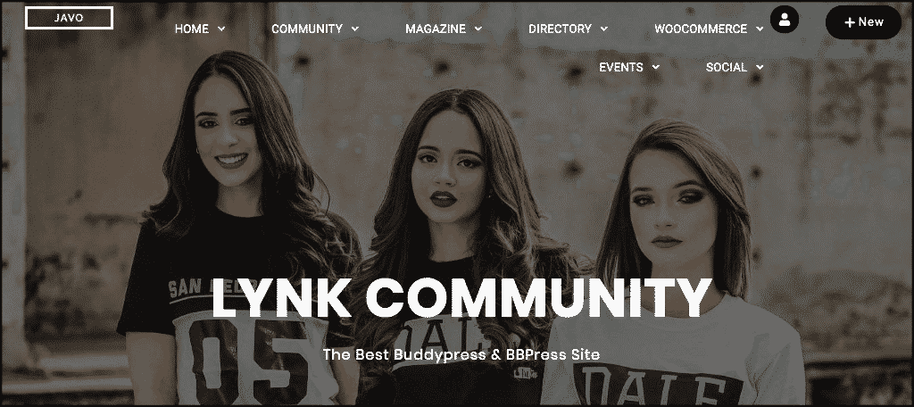 Lynk community website theme