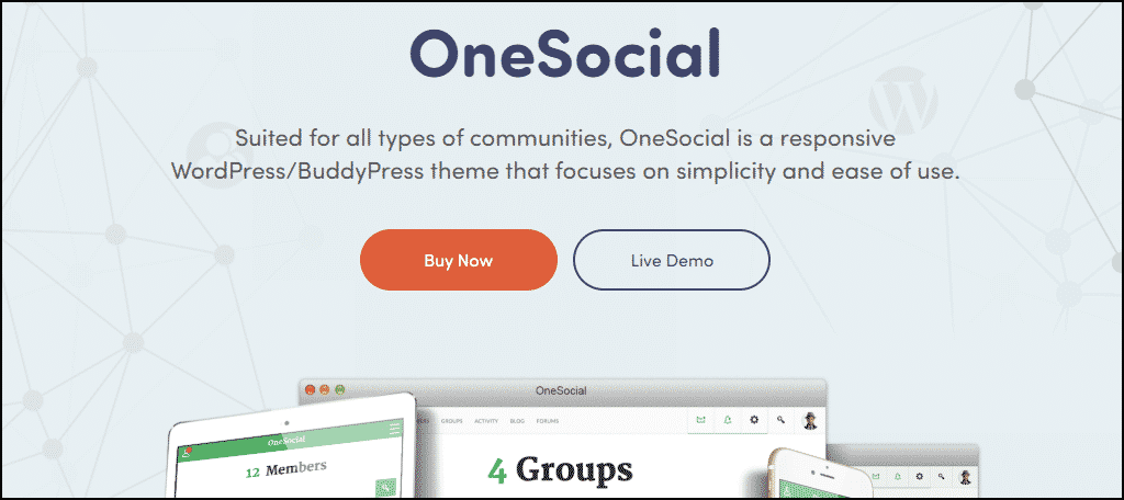 OneSocial WordPress theme