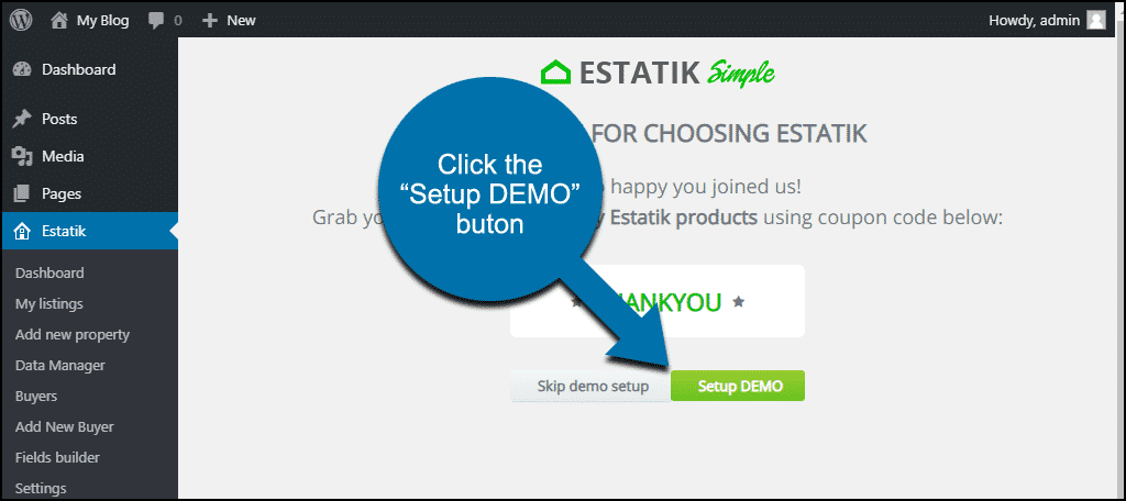 "click the ""Setup DEMO"" button"