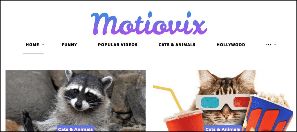 Motiovix