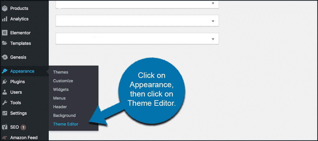 Appearance then theme editor