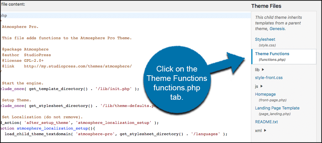 Click on the theme functions functions php tab