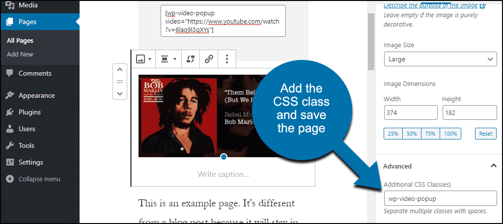 paste the trigger class for image