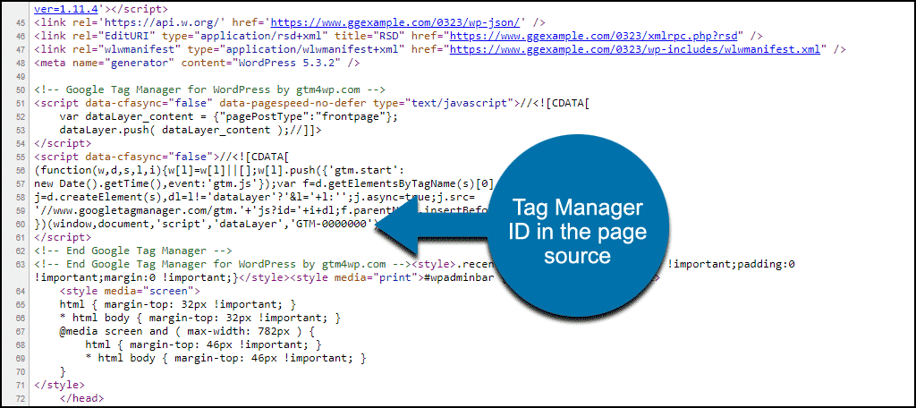 Tag Manager ID in source