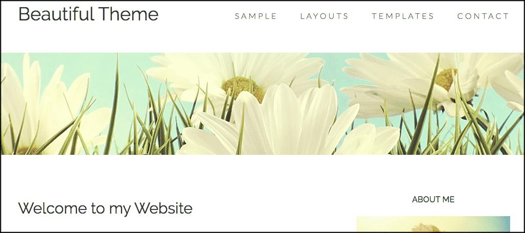 Beautiful Pro makeup blog theme