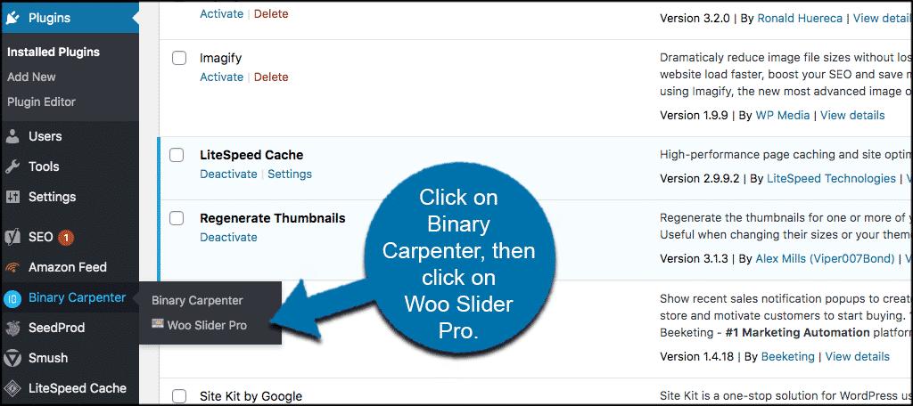 Click on Binary Carpenter