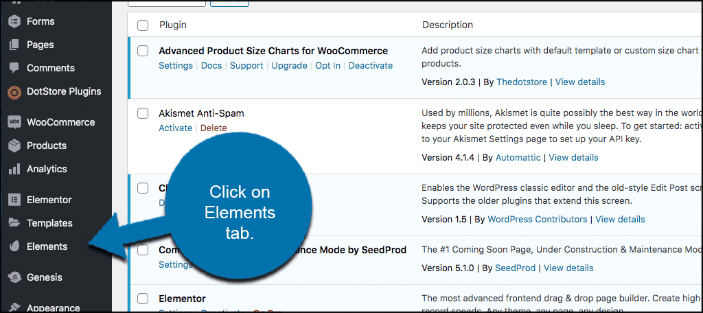 Click on elements tab