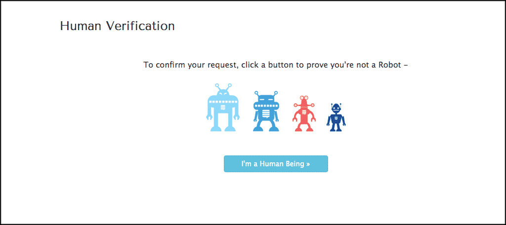 Human verification page