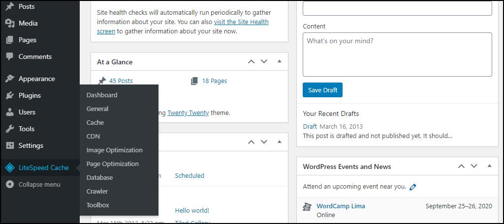 WordPress LiteSpeed Cache plugin options