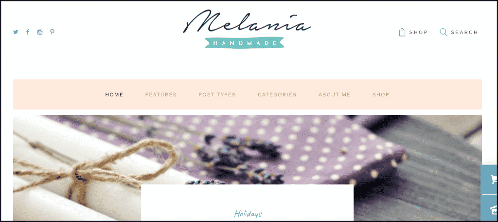 Melania mom blog theme
