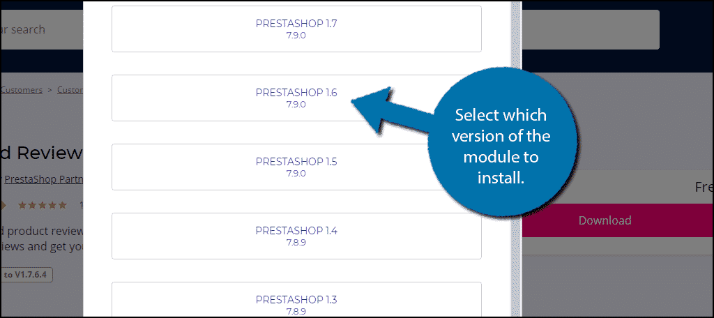 Module Version
