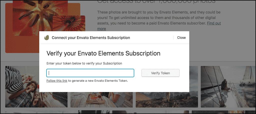 Paste envato elements token in field