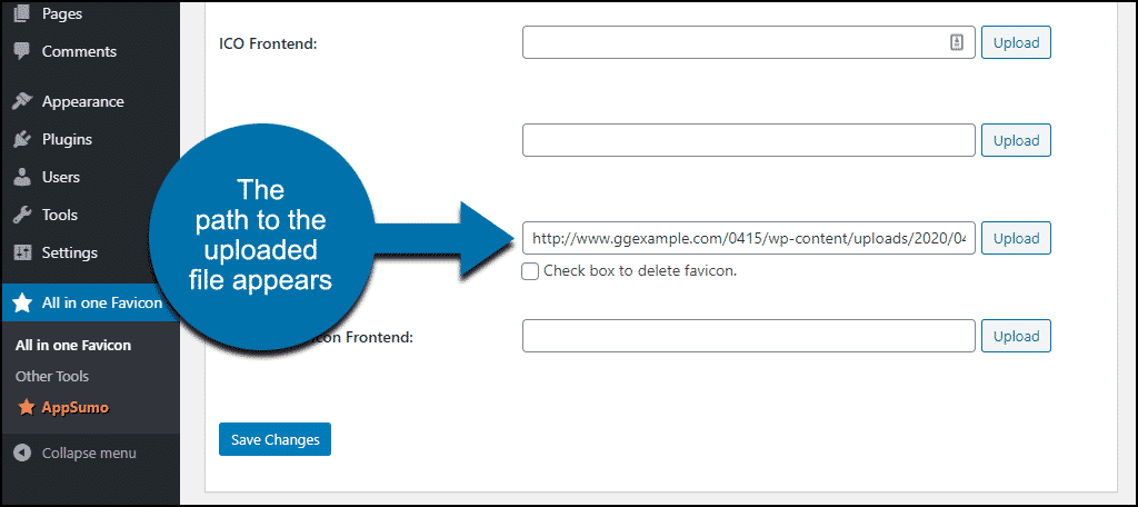 path to your uploaded file
