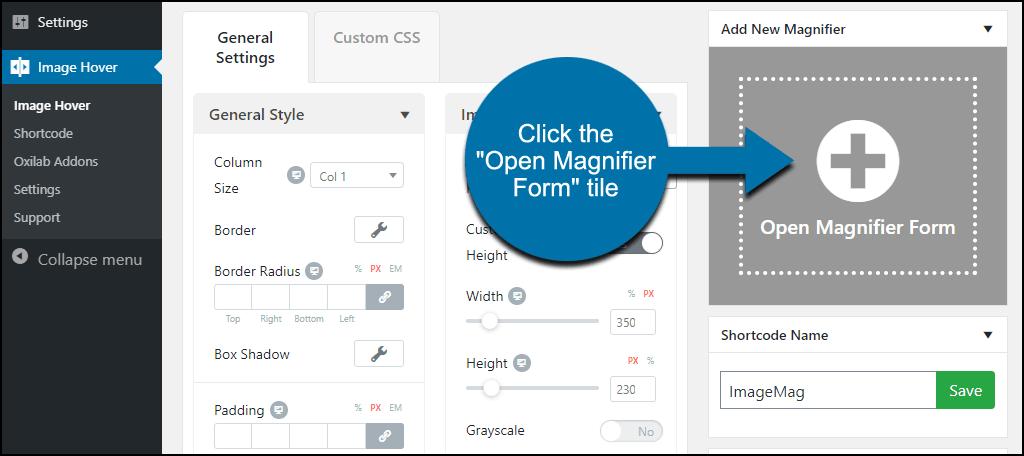 "click the ""Open Magnifier Form"" tile"