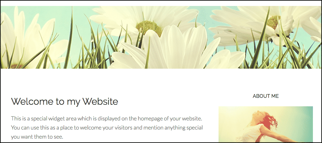 Beautiful Pro theme for advice blog