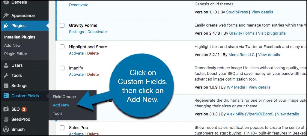 Click custom fields then add new