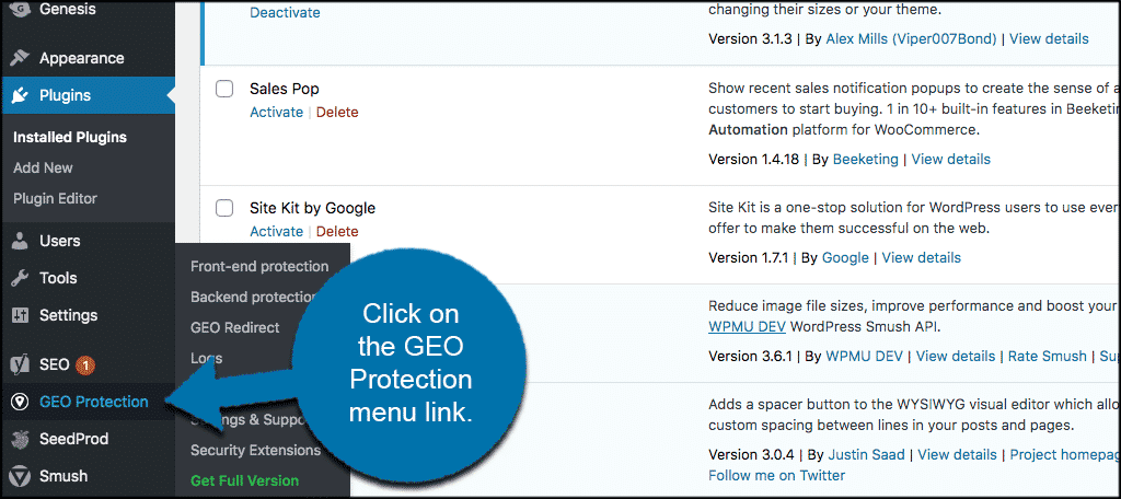 Click GEO protection tab