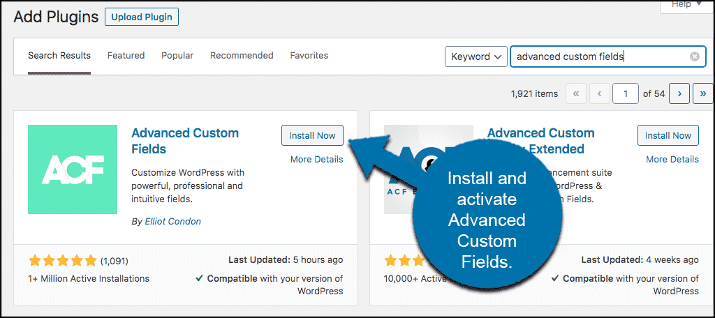INstall and activate advanced custom fields