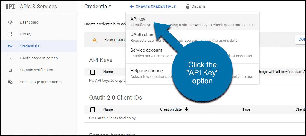 """click the """"API Key"""" option"""