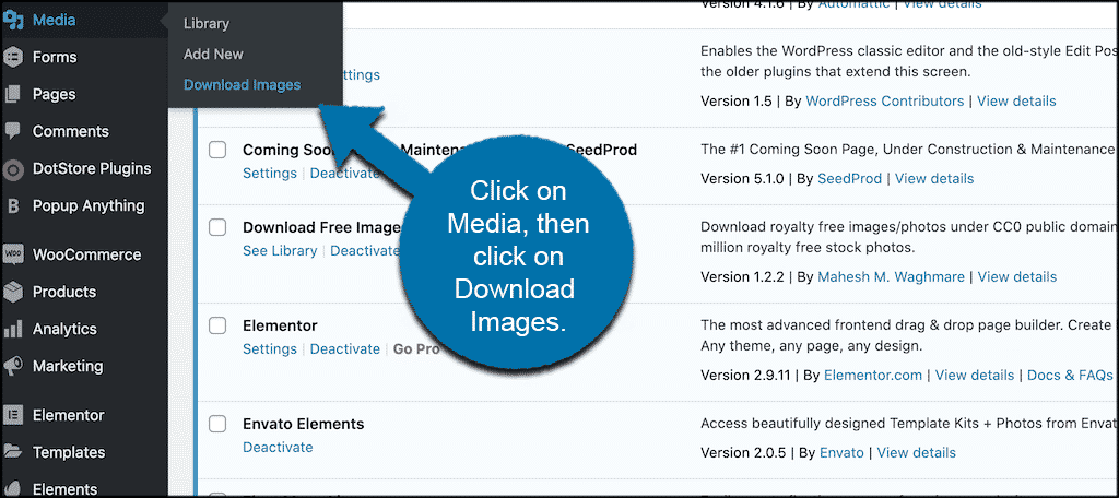 Click media then download images