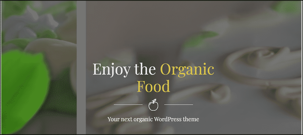 Organic Food theme for nutrition blog