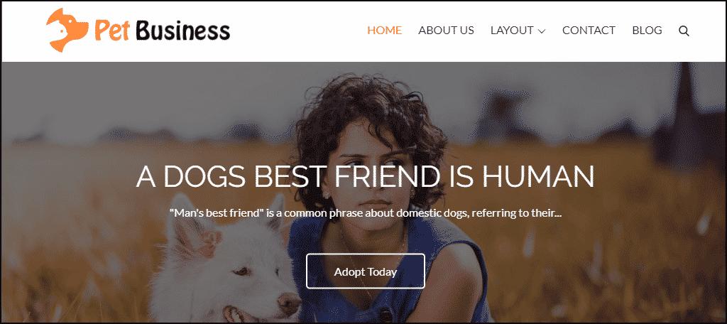 Pet Business WordPress theme