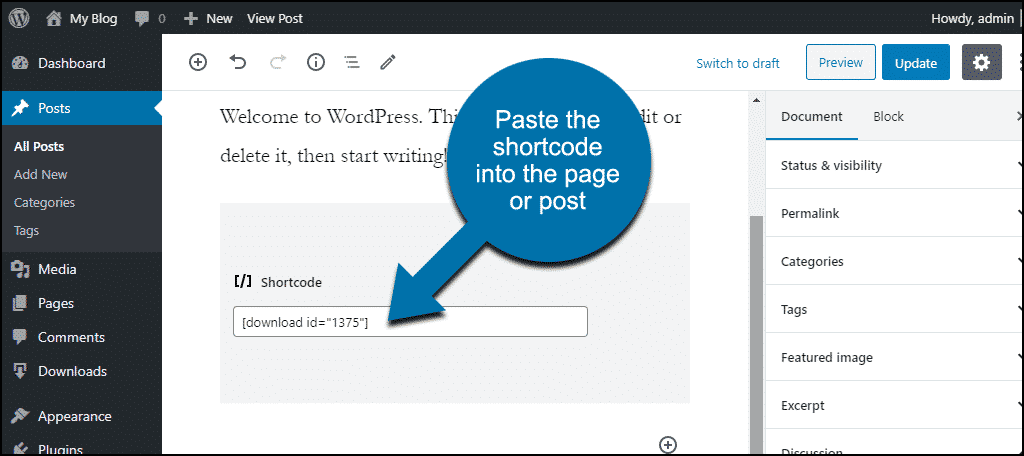 enter shortcode in post