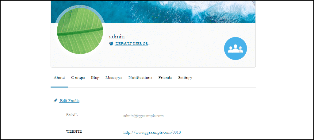 ProfileGrid WordPress plugin user profile