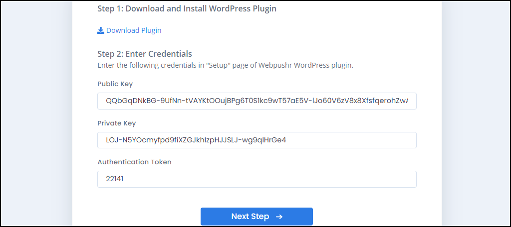 Webpushr WordPress plugin keys and tokens