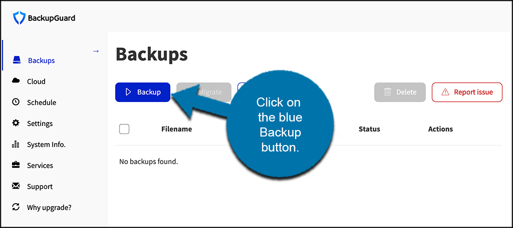 Click blue backup button